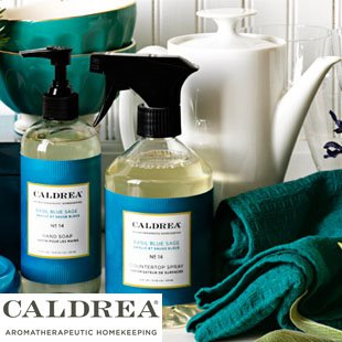 Fragrant Kitchen Cleaners and Soaps from P.C. Fallon Co.