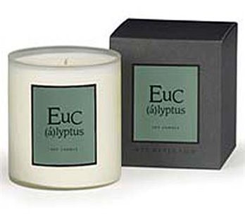 Archipelago A.B. Home Eucalyptus Large Soy Candle