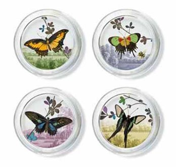 Prairie Glass Coaster Set of 4