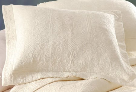 Natural Shells Quilt Bedding from C&F Enterprises : natural shells quilt - Adamdwight.com