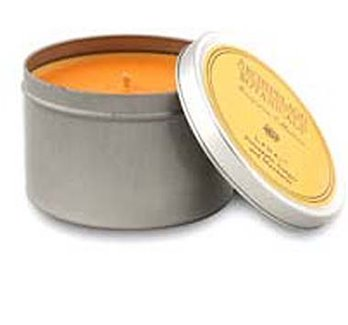 Archipelago Excursion Lanai Candle in Tin