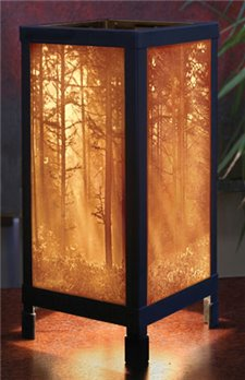 Woodland Sunbeams Luminaire by Porcelain Garden