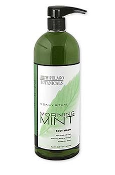 Archipelago Morning Mint 32 oz. Body Wash