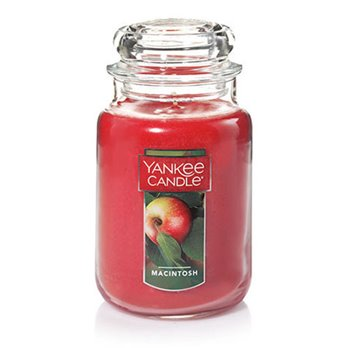Yankee Candle MacIntosh Large Jar Candle