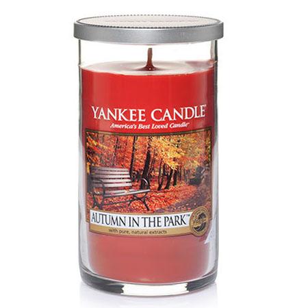 Yankee Candle Autumn In The Park Medium Perfect Pillar