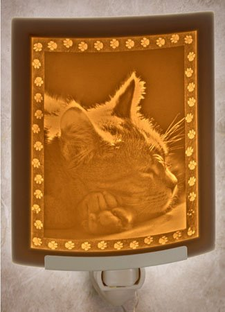 Kitten Dreams Night Light by Porcelain Garden