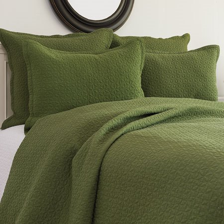 Manchester Fern Twin Quilt Set