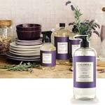 Lavender Pine