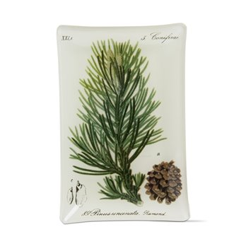 Archival Pine Bough Glass Plate