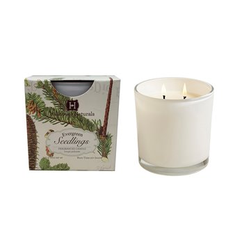 Evergreen Seedlings 2 Wick Candle In White Glass 12 oz  by Hillhouse Naturals