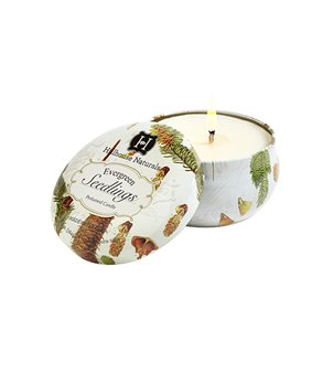 Evergreen Seedlings Candle Tin 6.5 oz by Hillhouse Naturals