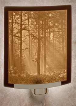 Woodland Sunbeams Night Light by Porcelain Garden
