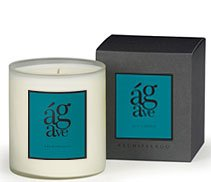 Archipelago Agave Large Soy Candle