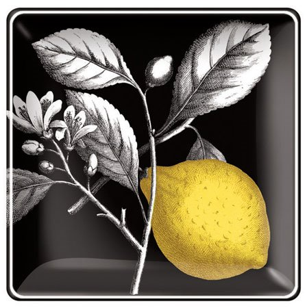 Botanical Lemon Small Square Tray