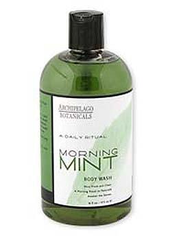 Archipelago Morning Mint 17 oz. Body Wash