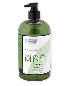 Archipelago Morning Mint Hand Wash