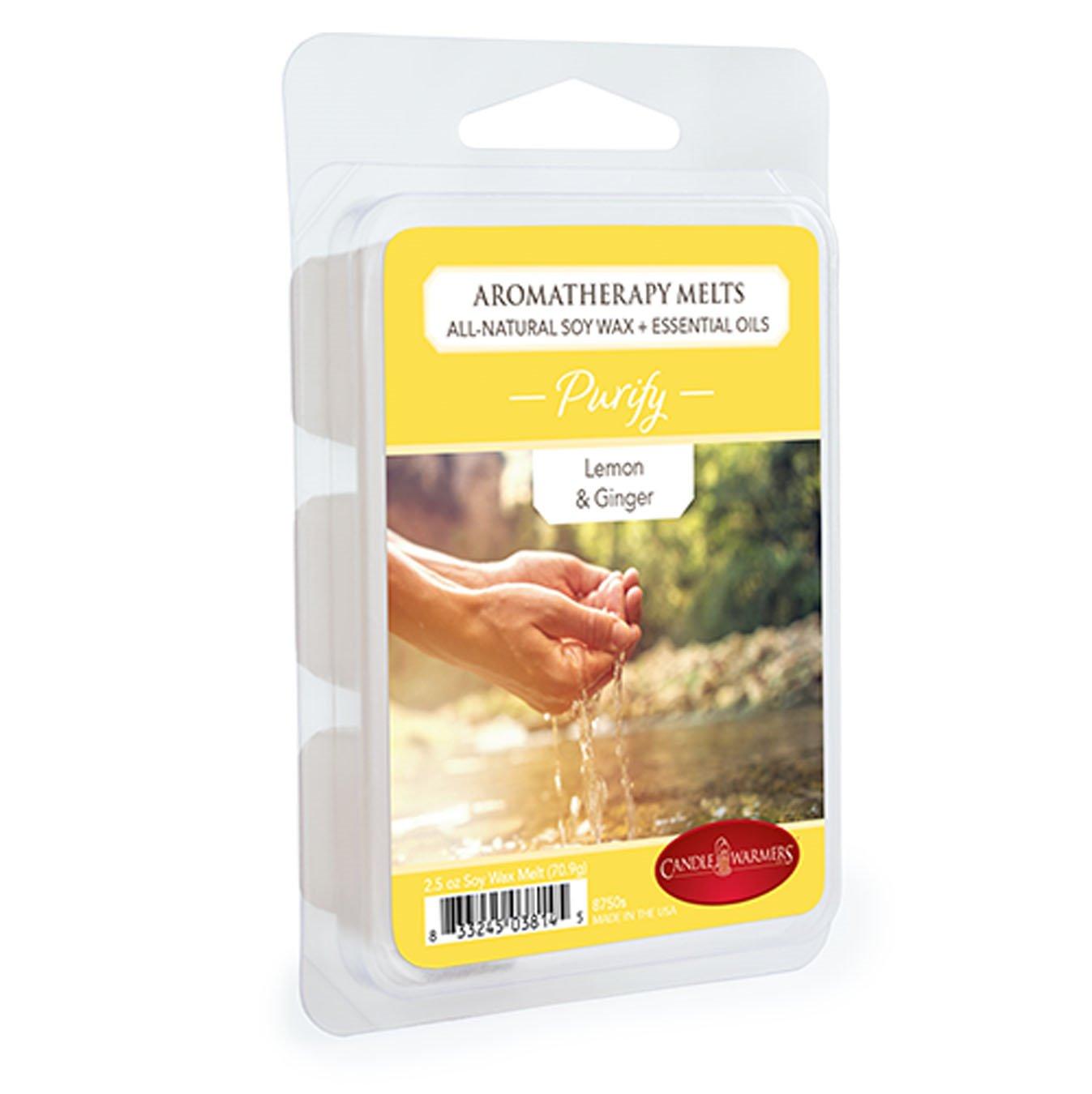 Purify 2.5 Oz Aromatherapy Wax Melts