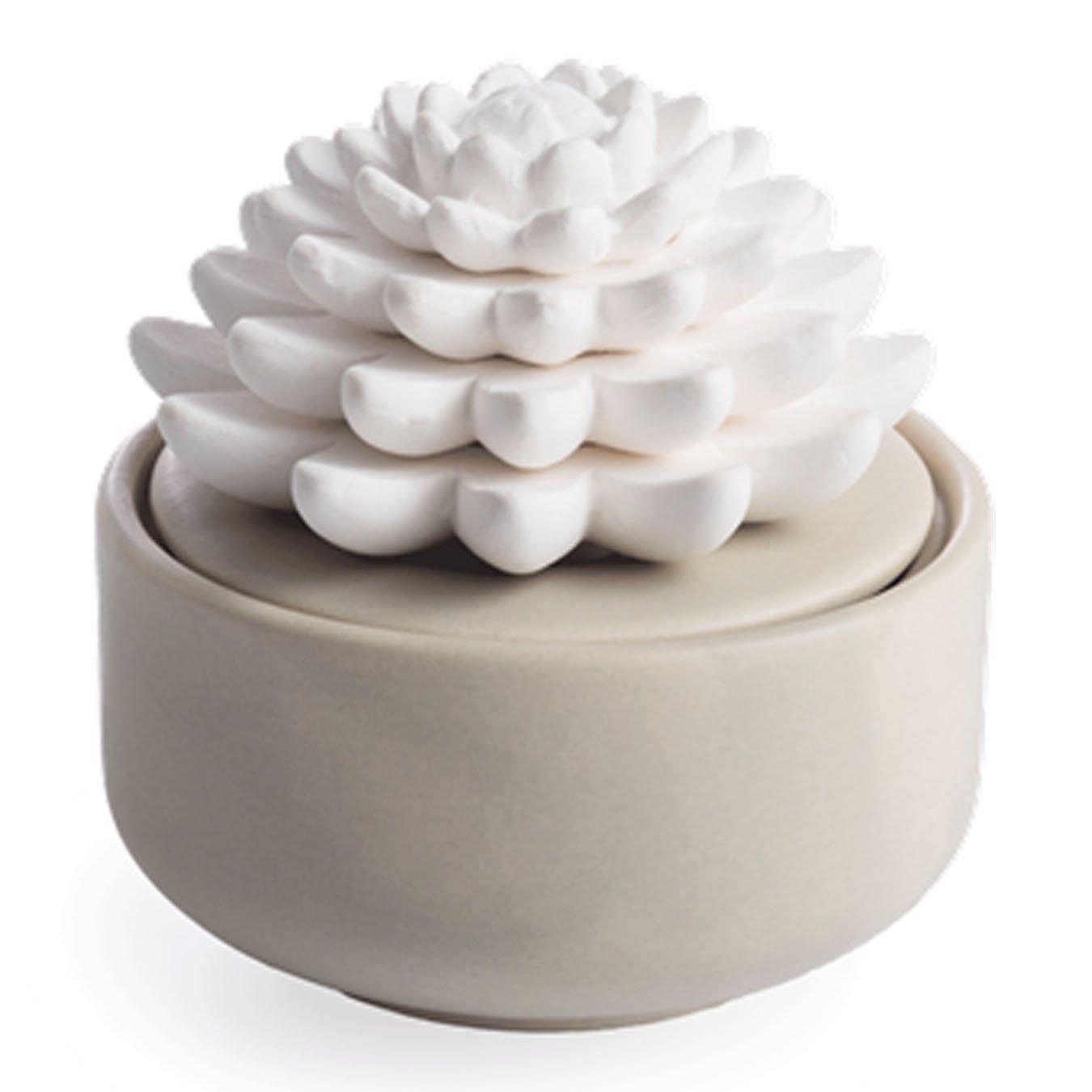 Succulent Porcelain Essential Oil Diffuser
