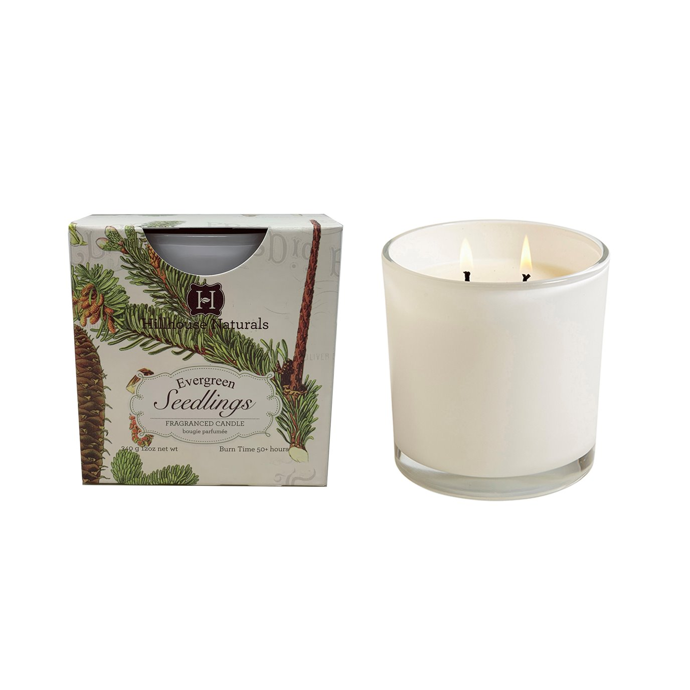 Evergreen Seedlings 2 Wick Candle In White Glass 12 oz Ctn 6 by Hillhouse Naturals