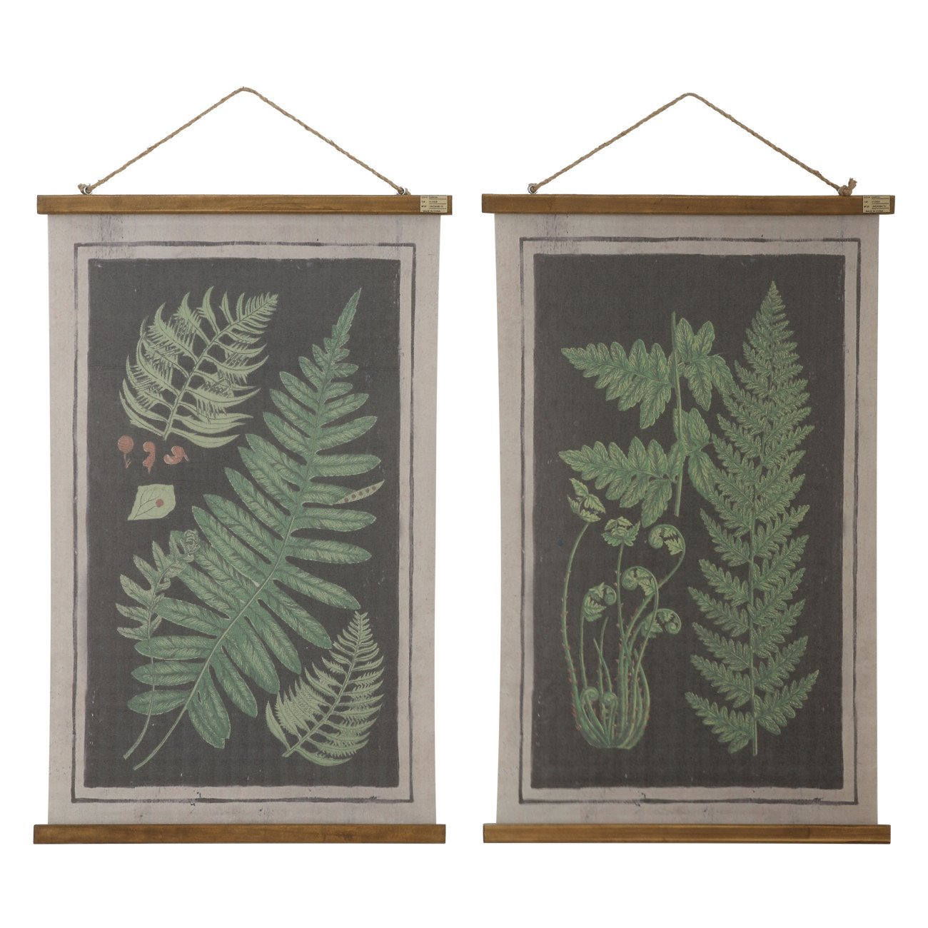 Fern Scrolls Wall Décor (Set of 2 Designs)