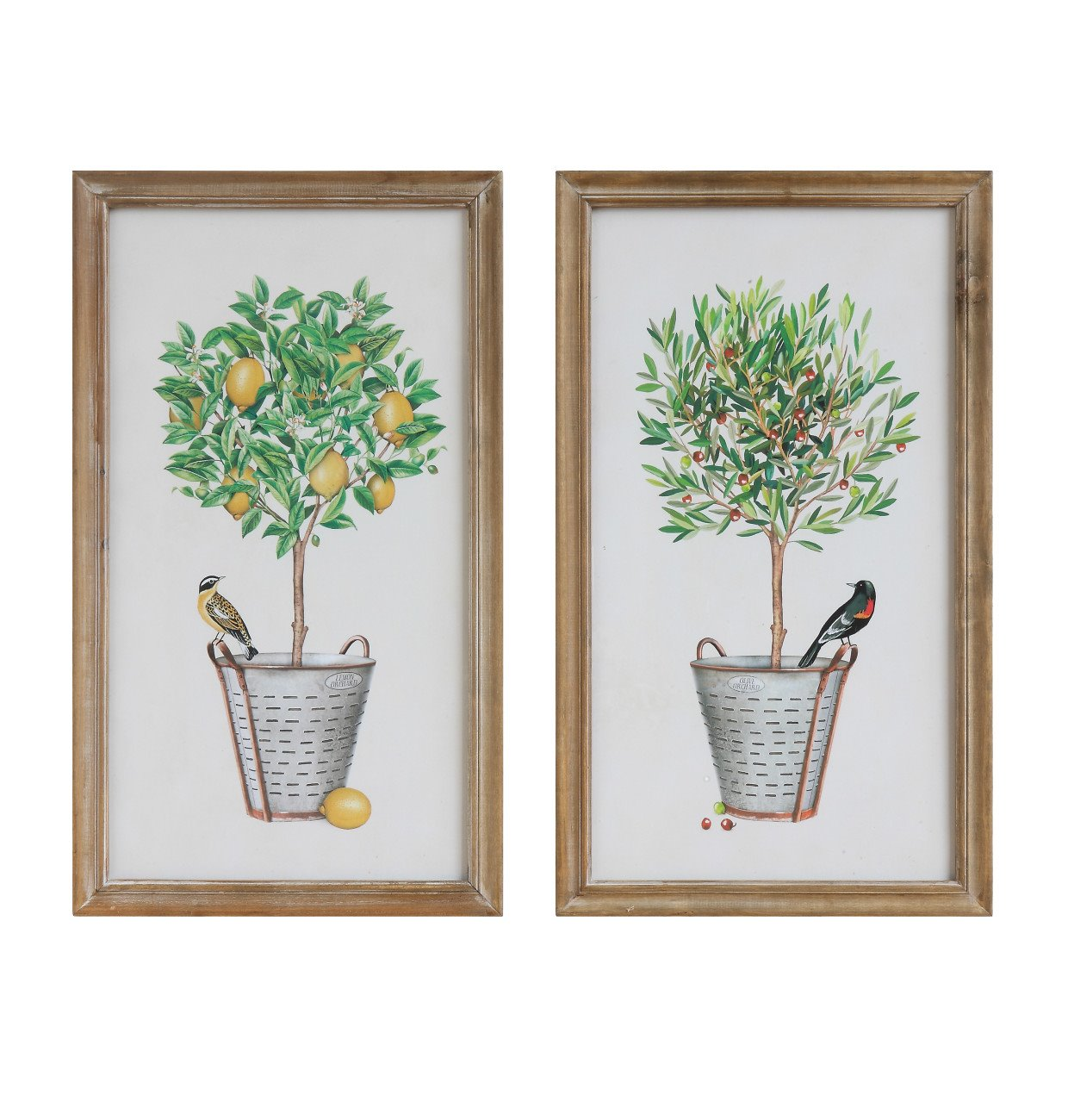 Wood Framed Wall Décor with Potted Plants & Birds (Set of 2 Designs)