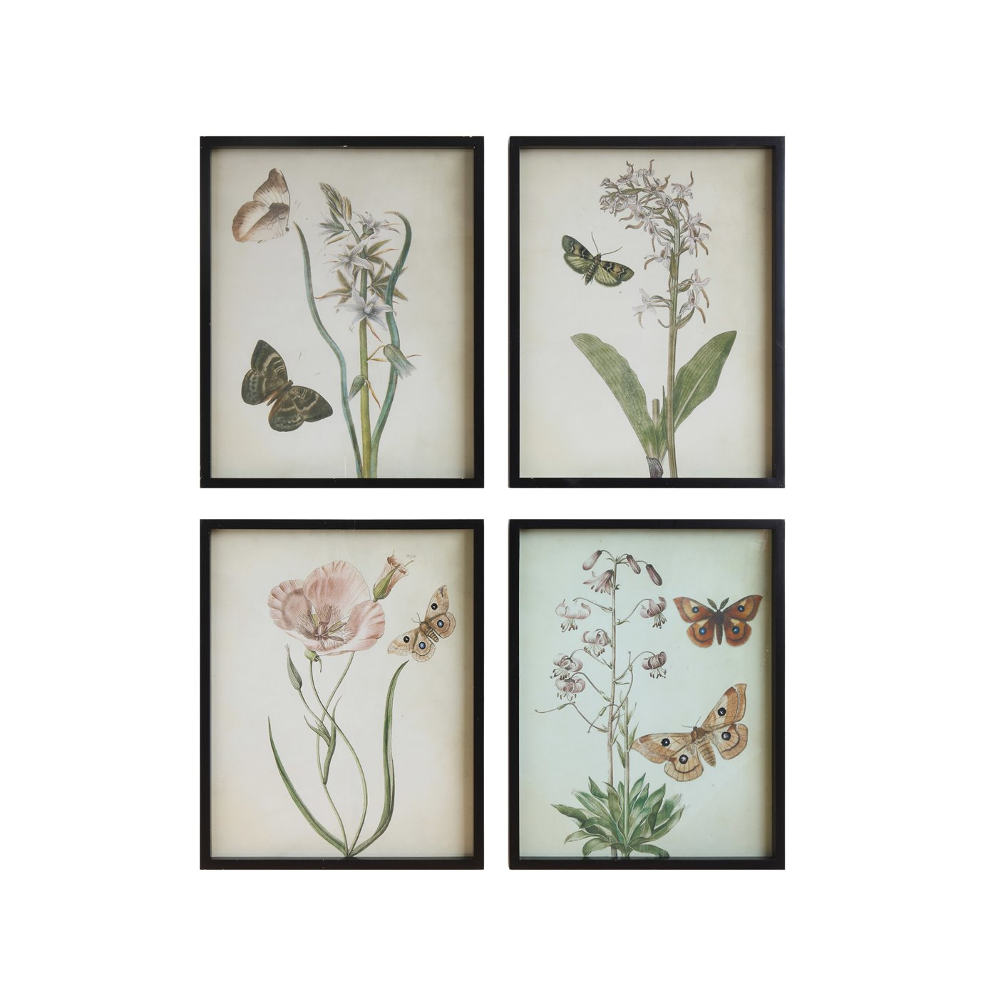 Flowers & Butterflies Framed Wall Décor (Set of 4 Designs)
