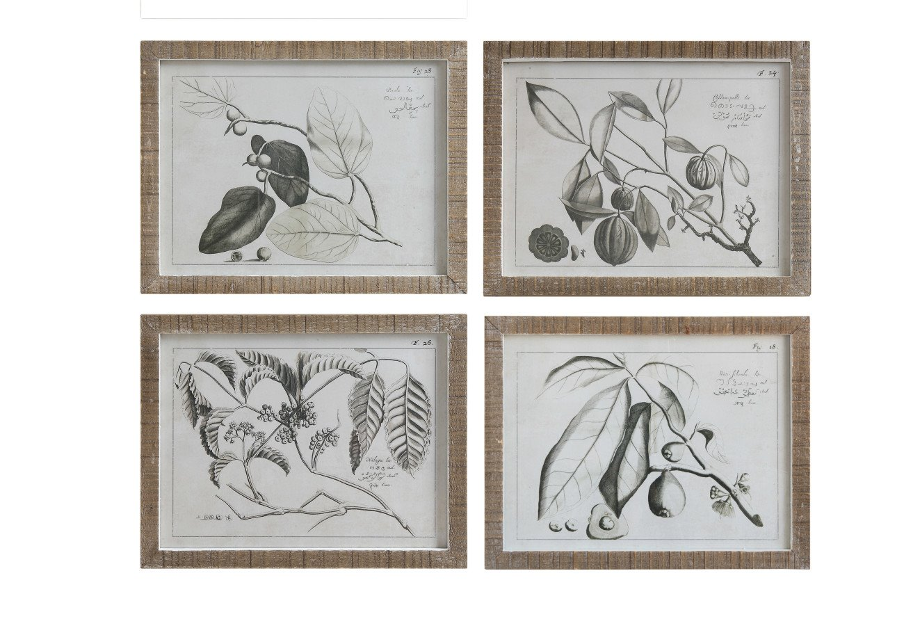 Fruit Branch Framed Wall Décor (Set of 4 Designs)