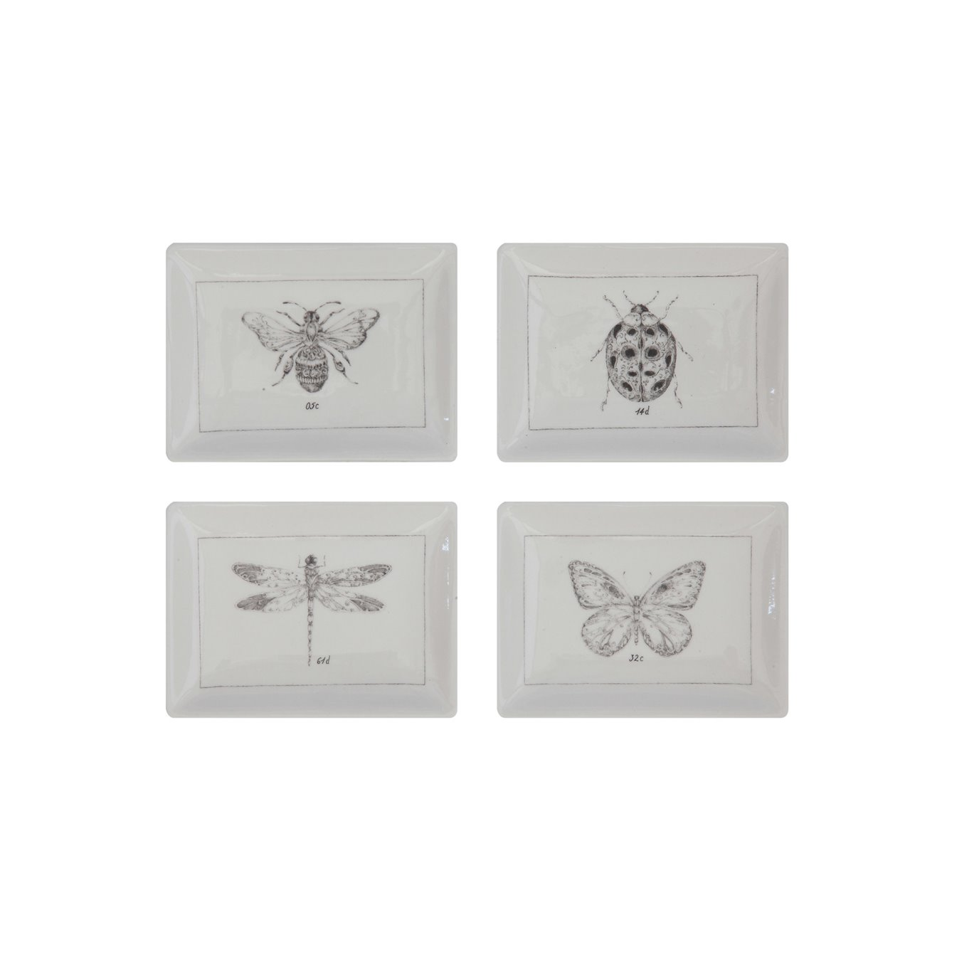 Rectangle Ceramic Dishes with Insect Images (Set of 4 Designs)