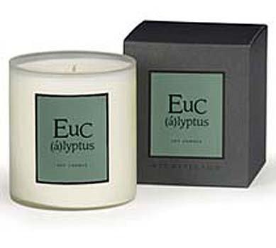 Archipelago Eucalyptus Large Soy Candle