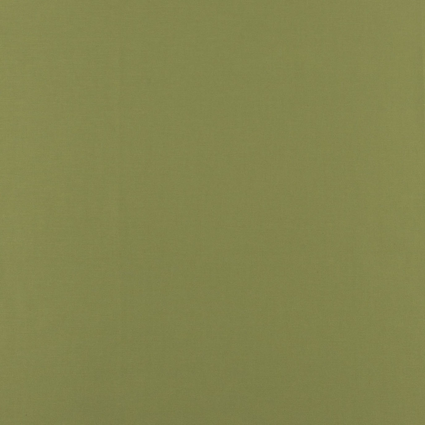 Hepworth Solid Green Fabric