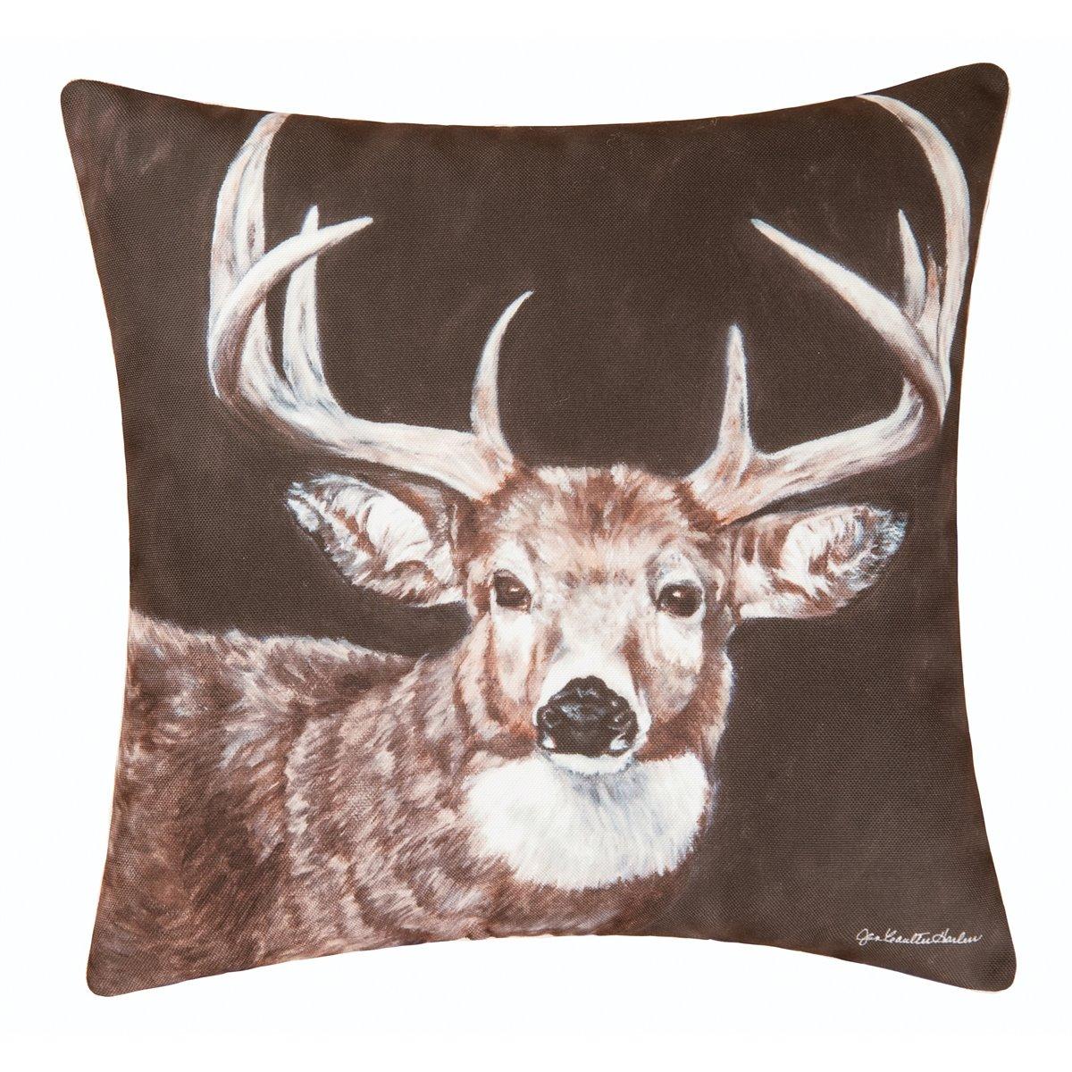 Caleb Buck Indoor/Outdoor Pillow