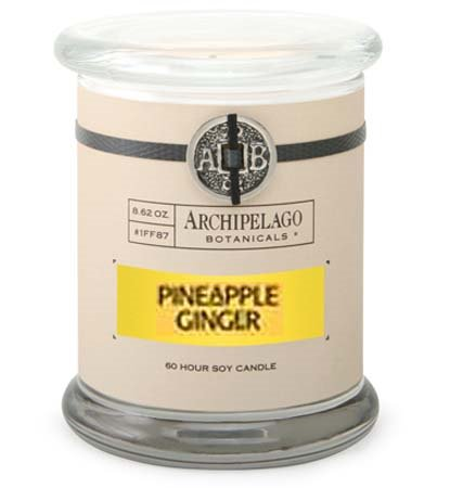 Archipelago Pineapple Ginger Jar Candle Thumbnail