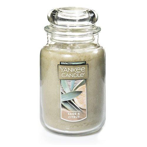 Yankee Candle Sage & Citrus Large Jar Candle Thumbnail